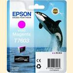 Epson UltraChrome HD - Photo Vivid Magenta Ink Cartridge